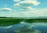 Соминское озеро. Где прячется украинская Лох-Несси?