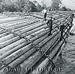 Лесосплавщики - торжество плота