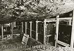 Подземный клад рейха